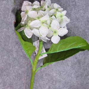 Vara de Hortencia blancas