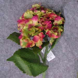 Vara de Hortencia verde con rojo