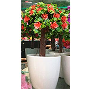 Maceta de melamina blanca con arbol de hojas verdes con flores rojas
