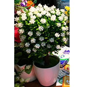 Maceta de melamina blanca con topiario de hojas verdes y flores blancas