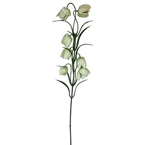 Vara con flores campanita blancas