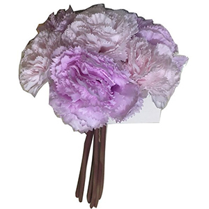 Ramo de claveles lilas