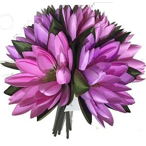 Ramo de flores de loto rosas