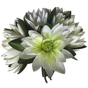 Ramo de flores de loto blancas