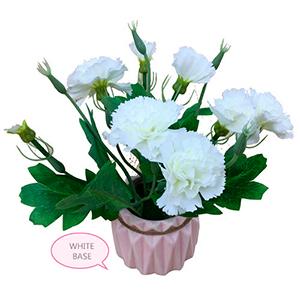 Maceta de ceramica blanca con flores de clavel blanco