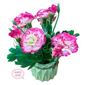Maceta de ceramica con flores de clavel rosas