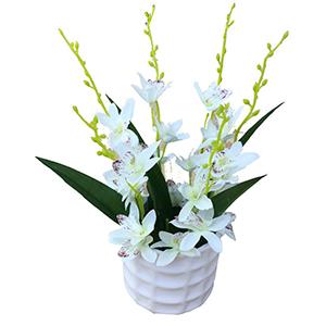 Maceta de ceramica cilindrica con flor de orquideas blancas