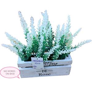 Maceta de madera con flor de lavanda blanca