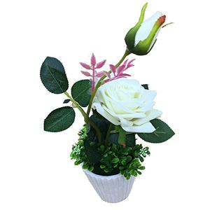 Macetita de yeso con flor de rosa blanca