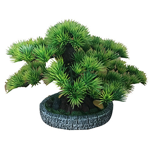 Arbol bonsai con mac