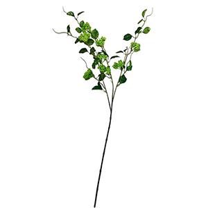 Vara con hojas y berries verdes