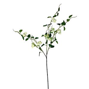 Vara con hojas y berries blancas