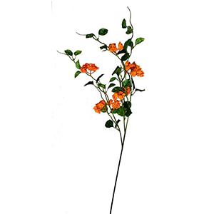 Vara con hojas y berries naranjas