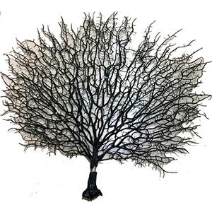 Planta de plastico negra diseño coral