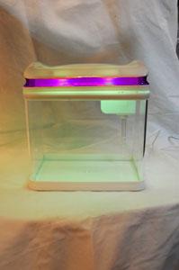 Pecera de plástico con tapa y luz led morada con puerto USB p/2lt
