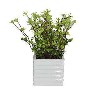 Planta artificial en maceta de cerámica