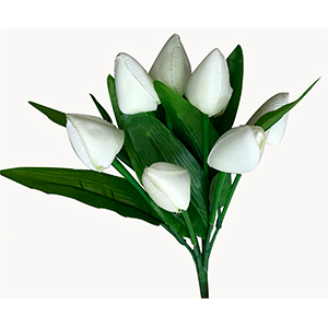 Ramo de Tulipanes blancos