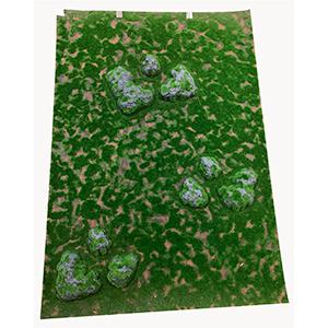 Tapete de pared diseño musgo y piedras de 1 m x 70 cm