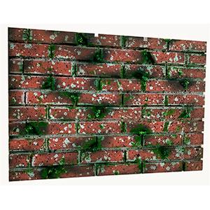 Tapete de pared diseño ladrillos rojos con musgo de 1 m x 70 cm