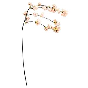 Vara con flores de durazno