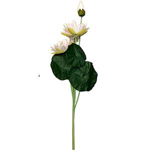 Vara con flores blancas y hojas verdes