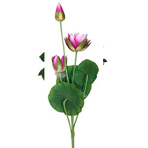 Vara con flores rosas y hojas verdes
