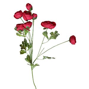 Vara con rosas rojas